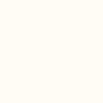 biały – Ral 9016